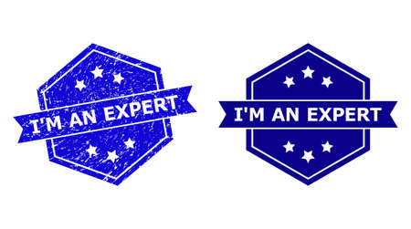 Hexagon IM AN EXPERT seal on a white background, with source version. Flat vector blue grunge watermark with IM AN EXPERT phrase inside hexagon shape, ribbon used also.