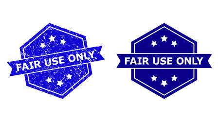 Hexagon FAIR USE ONLY stamp on a white background, with original variant. Flat vector blue grunge seal stamp with FAIR USE ONLY caption inside hexagon form, ribbon is used.