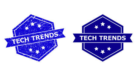 Hexagon TECH TRENDS seal on a white background, with original version. Flat vector blue grunge watermark with TECH TRENDS text inside hexagoanl shape, ribbon is used also. 일러스트