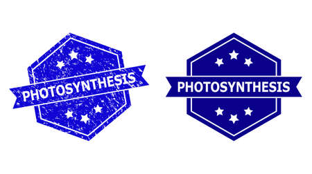 Hexagon PHOTOSYNTHESIS watermark on a white background, with original version. Flat vector blue scratched watermark with PHOTOSYNTHESIS message inside hexagon form, ribbon used.