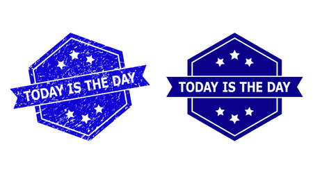 Hexagon TODAY IS THE DAY watermark on a white background, with clean variant. Flat vector blue distress seal with TODAY IS THE DAY title inside hexagoanl shape, ribbon is used. Ilustração