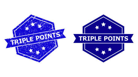 Hexagon TRIPLE POINTS stamp seal on a white background, with undamaged variant. Flat vector blue distress seal with TRIPLE POINTS phrase inside hexagon form, ribbon used. Ilustração