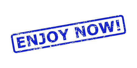 Blue ENJOY NOW! seal stamp on a white background. Flat vector scratched seal stamp with ENJOY NOW! message is inside rounded rect frame. Imprint with scratched surface.