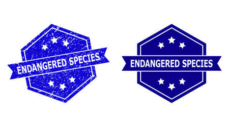 Hexagon ENDANGERED SPECIES stamp seal on a white background, with clean version. Flat vector blue grunge stamp with ENDANGERED SPECIES text inside hexagon form, ribbon used also.