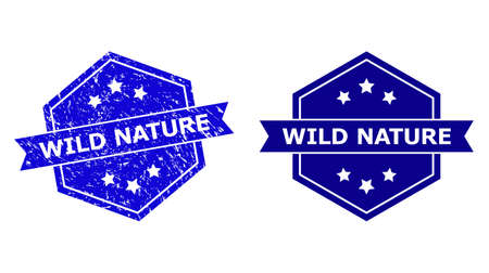 Hexagon WILD NATURE stamp seal on a white background, with original variant. Flat vector blue grunge seal with WILD NATURE phrase inside hexagon shape, ribbon used.