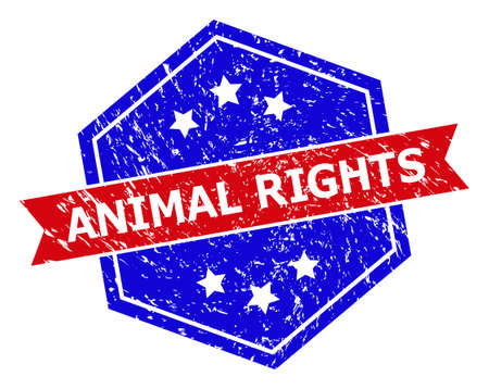 Hexagon ANIMAL RIGHTS stamp seal. Flat vector red and blue bicolor grunge seal stamp with ANIMAL RIGHTS title inside hexagon form, ribbon used also. Rubber imitation with grunge surface,