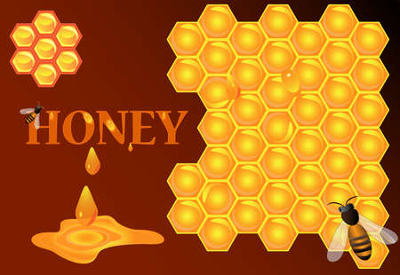 Background vector  Bee, honey and honeycomb Stock Vector - 13327673