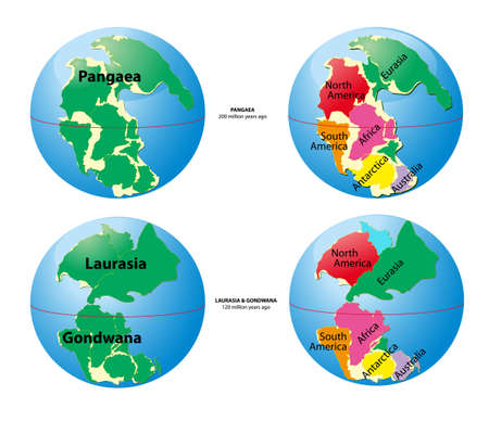 World map of Pangaea Vector