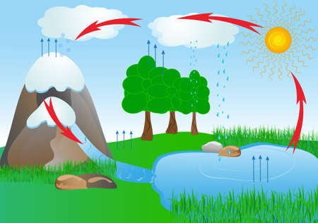 cycle water in nature environment  oxygen Vector