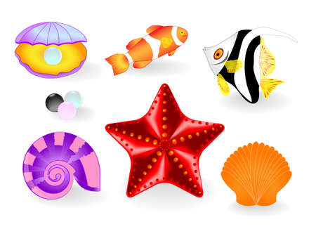 SUMMER BEACH TRAVEL  ELEMENT FOR DESIGN  Sea life Vector