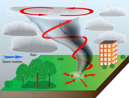 Tornado - natural disaster  Scheme vector  Иллюстрация