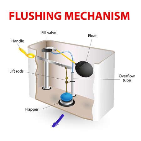 수세식 화장실 물 내리는 메커니즘의 벡터도