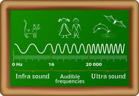 Geluid frequentiebereik voor infrageluid, hoorbare en ultrasone golven en de bijbehorende dieren die hen kan horen Mensen zijn alleen in staat om te horen tussen 20 Hz tot 20.000 Hz, iets hoger dan 20000 Hz of lager dan 20 Hz is niet te horen