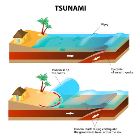 schemes: A tsunami is a series of huge waves. It washes against the coast several times with great speed and force. Tsunamis generated by submarine earthquakes travel at subsonic speed across the ocean surface.