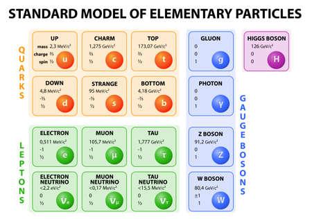Diagram van het Standaard Model van de deeltjesfysica. 12 fundamentele deeltjes waaruit materie en 4 fundamentele kracht dragers.