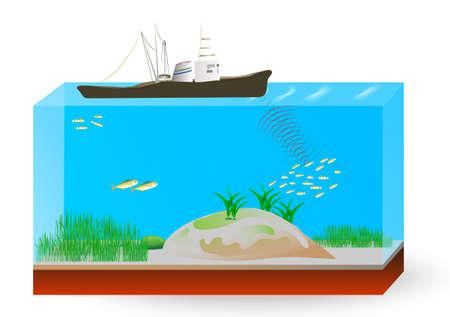 sonar: Utilise un sonar refl�tent les ondes sonores au lieu d'ondes radio comme en radar pour d�tecter et d�terminer la cible sous-marine. Illustration