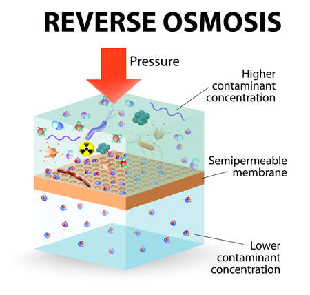 reverse osmosis use the membrane to act like an extremely fine filter to create drinking water from contaminated water.   Vector
