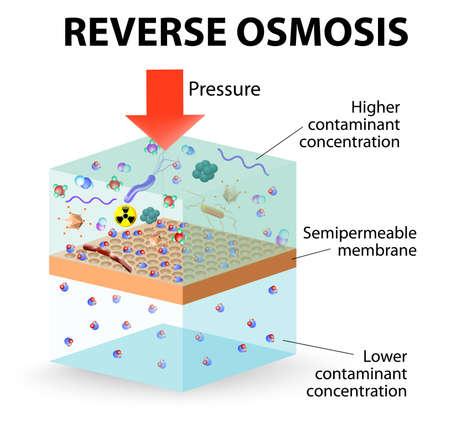 filtración: revertir el uso de la membrana de ósmosis para actuar como un filtro muy fino para crear agua potable a partir de agua contaminada. Vectores