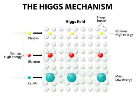 subatomic: Any interaction to Higgs Field gave MASS to any subatomic particles like Quarks and Electrons.The more they interact, the heavier they become. photons with no interaction are left with no mass