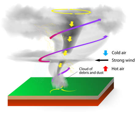 tornadoes: Tornadoes of a visible condensation funnel, whose narrow end touches the earth and is often encircled by a cloud of debris and dust.  Illustration