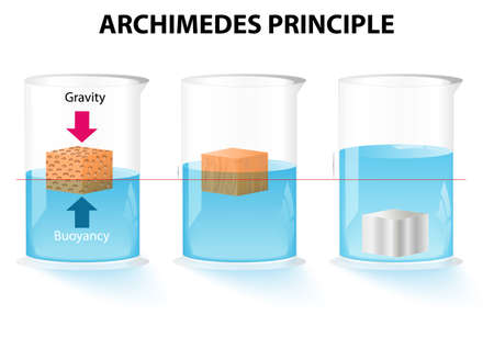 Archimedes principle. The buoyant force acting on an object is equal to the weight of the displaced fluid Illustration