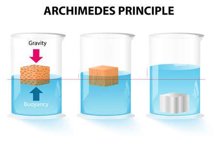 De wet van Archimedes. De drijvende kracht op een voorwerp gelijk is aan het gewicht van het verplaatste fluïdum