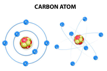protons: protons, neutrons, and electrons of a carbon atom