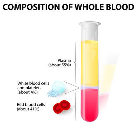 bloedplasma en gevormde elementen in reageerbuis Stock Illustratie