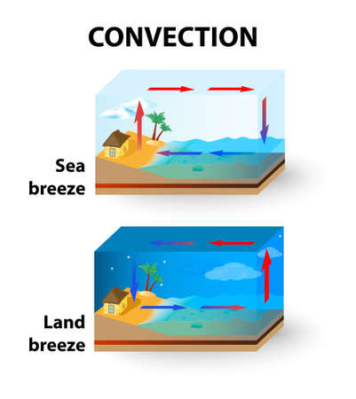 breeze: Convection is the transfer of thermal energy by particles moving through a fluid.  Illustration