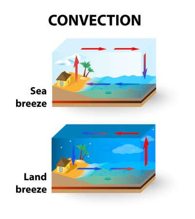 convection: La convezione � il trasferimento di energia termica da particelle in movimento attraverso un fluido. Vettoriali