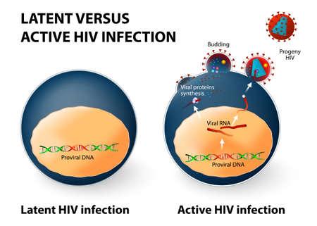 infektion: Latente und aktive HIV-Infektion.