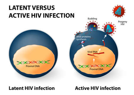 Latent and active HIV infection.