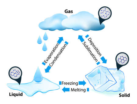 evaporacion: fase o estado de la materia. transición de fase. Este diagrama muestra las diferentes transiciones de fase, por ejemplo agua