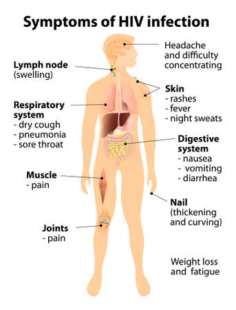 Signs and symptoms of HIV infection. Human silhouette with internal organs.