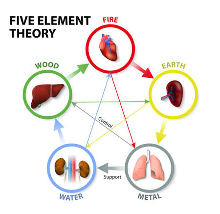 Five Element Theory. Oriental Medicine. The five element theory is used in traditional chinese medicine as a way to diagnose and treat illness. Ilustracja