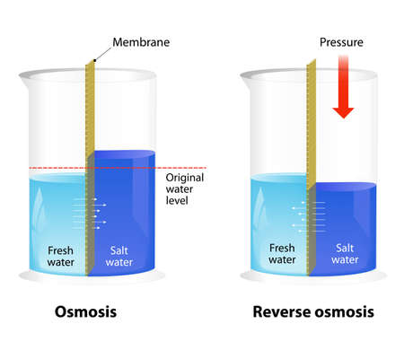 filtration: Difference Between Osmosis and Reverse Osmosis. Water passing through a semi-permeable membrane