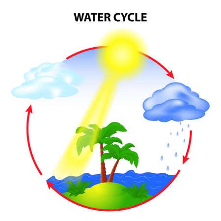 vapore acqueo: ciclo dell'acqua in natura ambiente Vettoriali