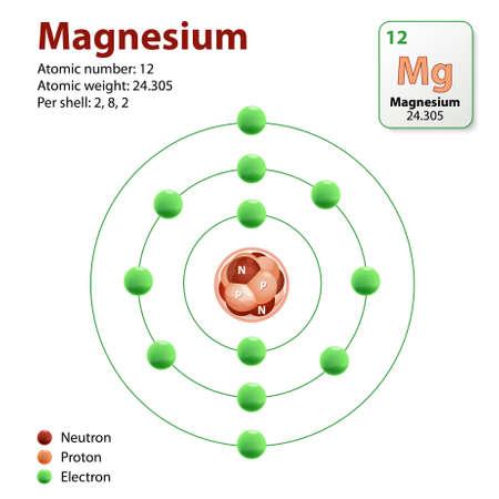 atomo: átomo de magnesio. Representación de un diagrama del elemento magnesio. Neutrones, protones y electrones
