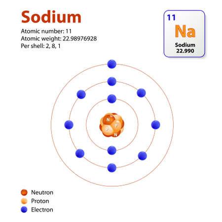 atom sodium this diagram shows the electron shell configuration rh 123rf com Carbon Atom Diagram sodium chloride atom diagram
