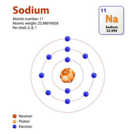 atomo: Sodio Atom. Este diagrama muestra la configuración de capa de electrones del átomo de sodio