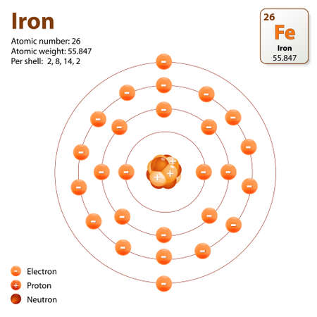 atomo: Átomo de hierro. Este diagrama muestra la configuración de capa de electrones del átomo de hierro Vectores