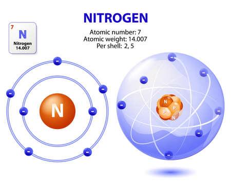 noble gas: atom nitrogen. structure atom Nitrogen. Vector