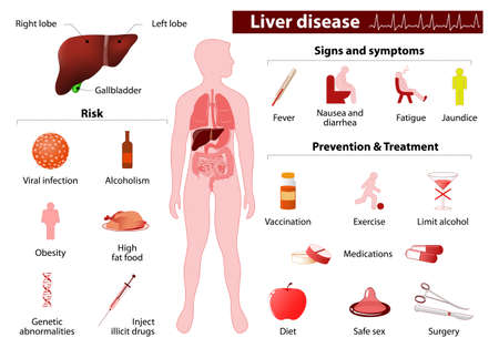 fibrosis: liver disease. Medical Infographic set elements and symbols for design.