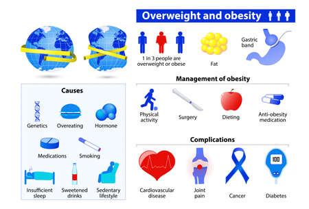 Otyłość i nadwaga infografika Ilustracje wektorowe