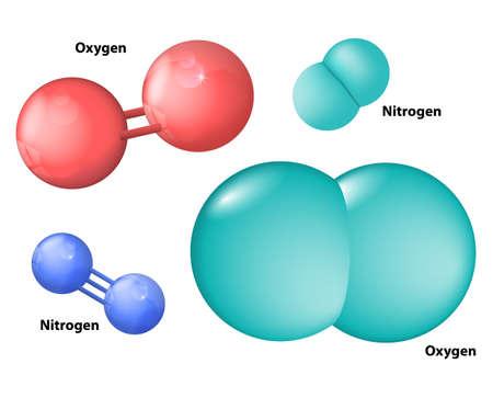 stikstof molecuul en zuurstofmolecule Vector Illustratie