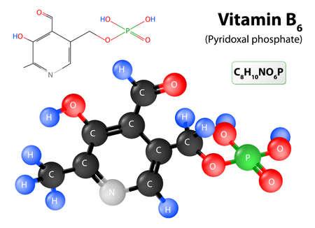 molecula: El fosfato de piridoxal la forma activa de la vitamina B6. modelo de la molécula de la vitamina B6. estructura molecular El fosfato de piridoxal