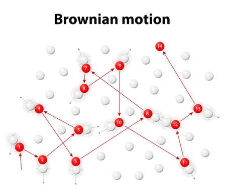 ブラウン運動または pedesis。一連の異なるランダムな方向に異なる速度で移動する他の粒子と衝突粒子のブラウン運動のシミュレーション。