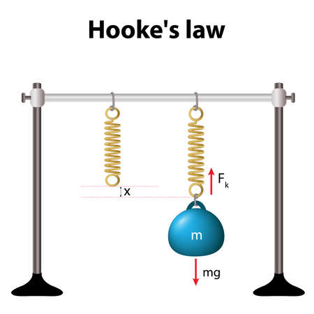 Hookes law. law of elasticity. for relatively small deformations of an object, the displacement or size of the deformation is directly proportional to the deforming force or load. Illustration