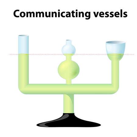 Communicerende vaten. 3 onderling communicerende glazen buizen van verschillende diameters en vormen. demonstratie-instrument voor de observatie van vloeistofdynamica. wanneer de vloeistof regelt, het evenwicht naar hetzelfde niveau in alle containers Vector Illustratie