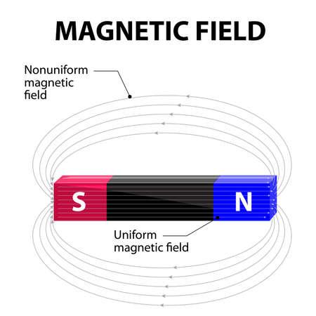 磁気フィールドです。均一・不均一磁場。磁場は、さまざまな時点でフィールドの方向を示す磁力線によって表されます。  イラスト・ベクター素材
